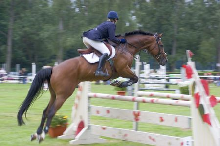 Jumping horse crossing an obstacle at a competition. Focus on the head of the horse - the rest of the image is motion blurred.