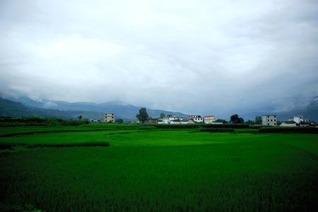 glistening: Yunnan granary, a glance in the past, glistening green