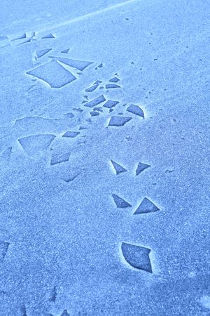 texture of the surfaces frozen lake with splinter of ice and snow groats, background photo