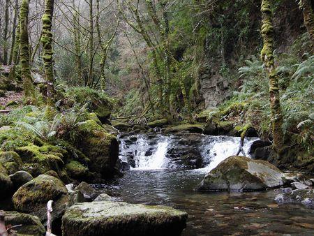 kerry: Scenic stream county Kerry, Ireland