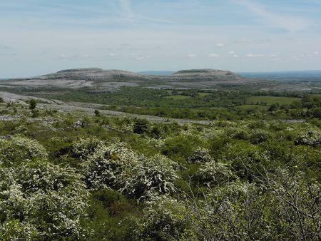 eiszeit: Burren Kalkstein Landschaft County Clare, Irland. Die Landschaft wurde geschnitzt, die von der letzten Eiszeit Lizenzfreie Bilder