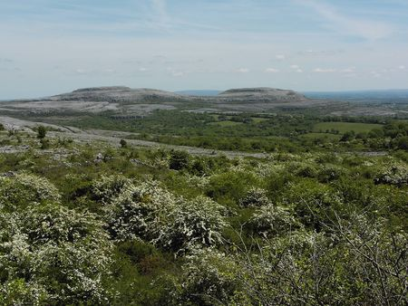 ice age: Burren limestone landscape county clare, ireland. The landscape was carved out by the last ice age
