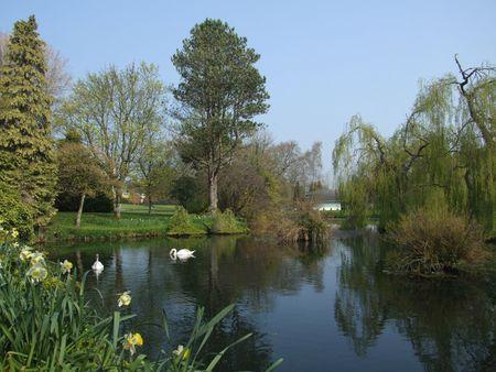 japenese: Vista del pintoresco lago en Japenese jardines del condado de Kildare, Irlanda Foto de archivo