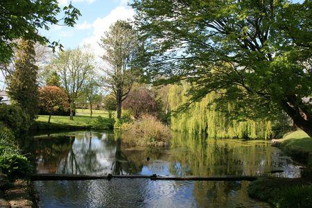 japenese: Beautiful pond in national park in Ireland