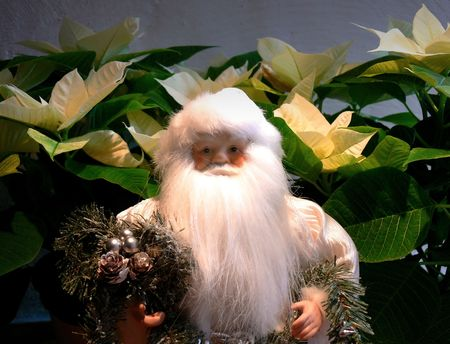 alf: A white Santa Claus in front of white christmas flowers