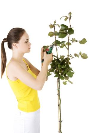 Happy gardener using pruning scissors. Isolated on white.  photo