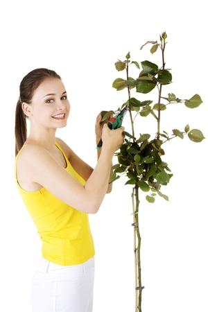 pruning scissors: Happy gardener using pruning scissors. Isolated on white.