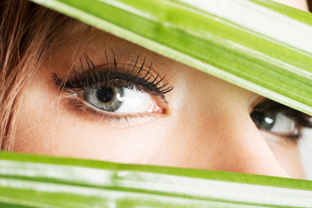 Detailed closeup of females eye between green material over white  photo