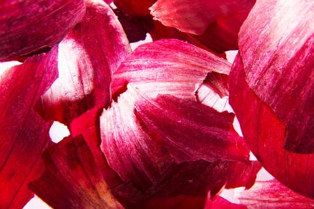 onion: Pelado la piel de cebolla roja