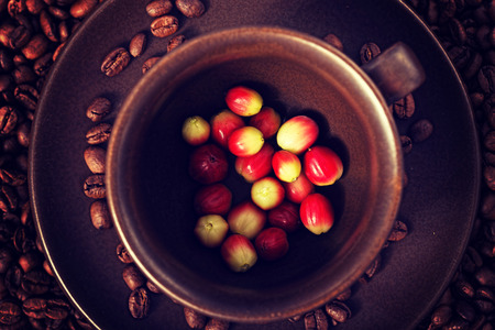 a lot: A lot of coffee berries in a cup Stock Photo
