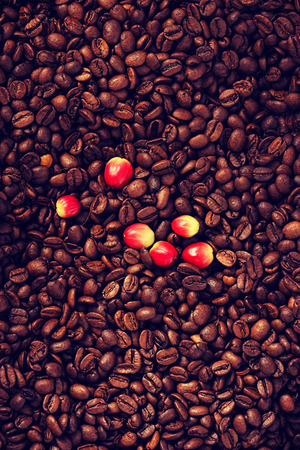 a lot: A lot of coffee beans and berry