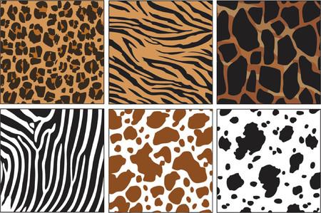 textured: illustration of animal skin textures, background patterns Illustration