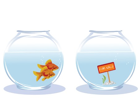 Two goldfish looking for new house Vector