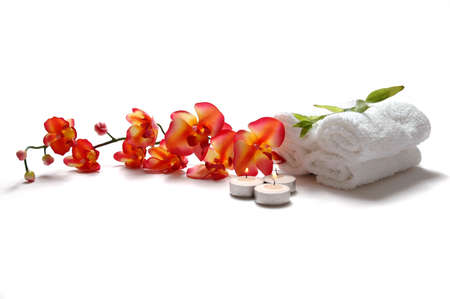 salon background: Beautiful Orchid Stock Photo