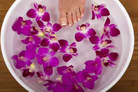 Spa treatment with fresh beautiful orchids Stock Photo - 819316
