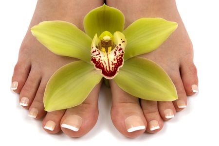 pedicure: Pedicured feet with beautiful fresh orchid