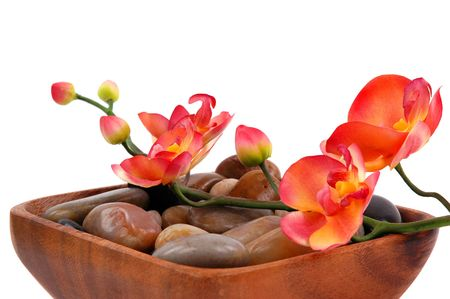 Orchid and pebbles                 photo