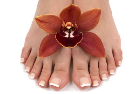 Pedicured feet with beautiful fresh orchid