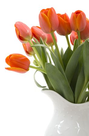 A bouquet of elegant tulips in a beautiful pitcher vase Stock Photo