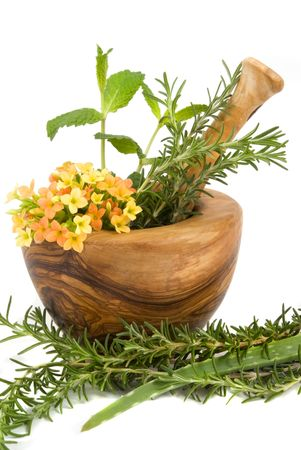 Healthy aromatic herbs in a spa (mint, rosemary, aloe vera in a carved olive tree mortar and pestle