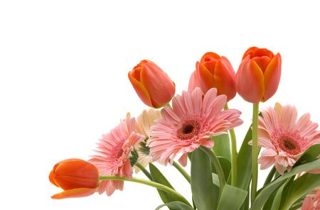 A bouquet of daisy gerberas and tulips