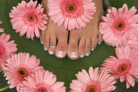 pedicure: Spa treatment with elegant pink gerberas Stock Photo