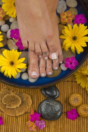 pedicure: Spa treatment with aromatic gerbera daisies, healing stones, olive oil soaps and mineral water