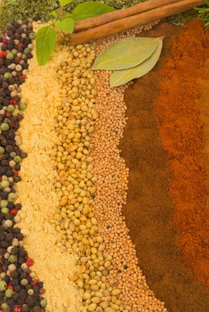 Healthy organic spices and herbs  Stock Photo - 2052774