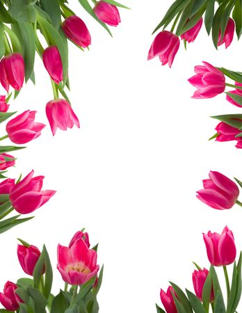 mother'sday: Beautiful flower frame Stock Photo