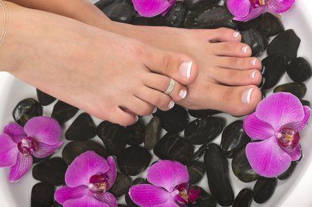 pedicura: Pedicured pies con agua terap�utica, guijarros, y ex�ticas orqu�deas