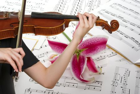 violist: Muzieknoten, spelen viool en lelie bloem