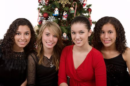 Diverse group of friends celebrating Christmas Stock Photo - 3897961