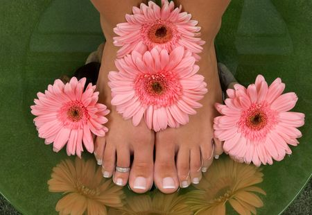 Pedicured feet and pink daisies Stock Photo - 3989428