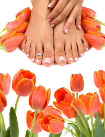 Pampered feet and hands with beautiful tulips photo