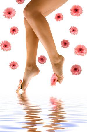 pies sexis: Hermosas piernas de gerbera margaritas y reflexi�n con el agua