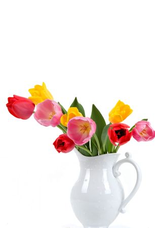 porcelain flower: Beautiful colorful tulips