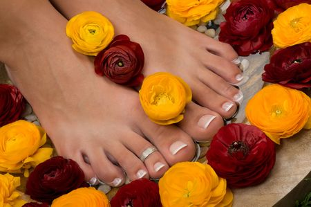 Spa treatment and pedicure with beautiful aromatic flowers photo
