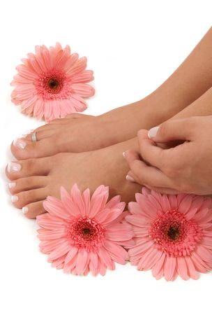 Pedicured feet and pink daisies photo