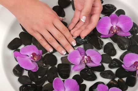 Manicured hands and orchids photo