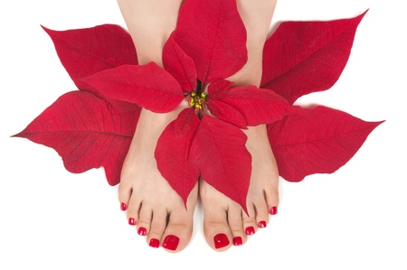 Christmas spa with pedicured feet Stock Photo - 11390799