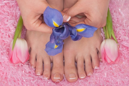 Spa, pedicure and manicure with tulips and iris photo