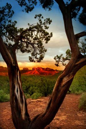 sedona: Sedona Arizona