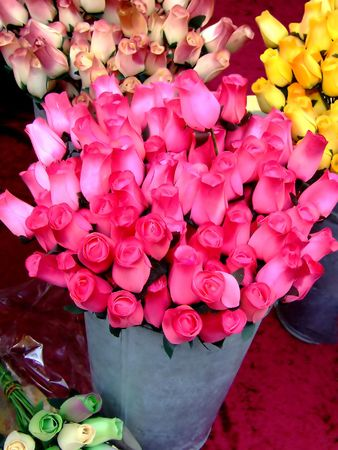 dozens: Buckets of dozens of roses in pink color on a table Stock Photo