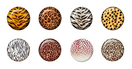 Eight African wild animal skins in 3d button Stock Photo