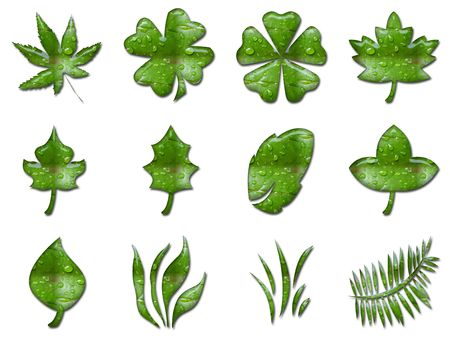 3d rendering of different green leafs shapes Stock Photo - 666518