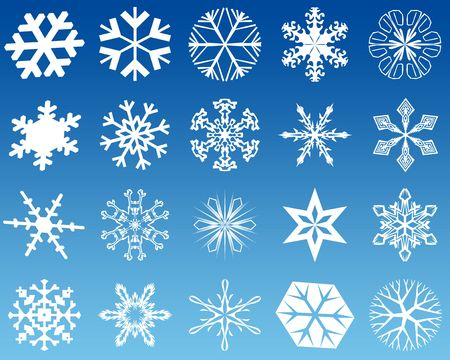 Twenty new 2d shapes of white snowflakes photo