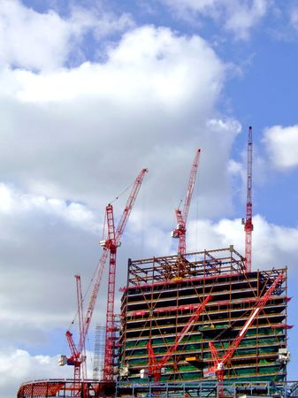 A big construction site with several red cranes photo