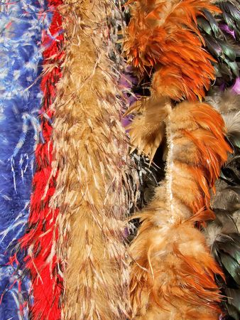Different kind of feathers in many colors photo