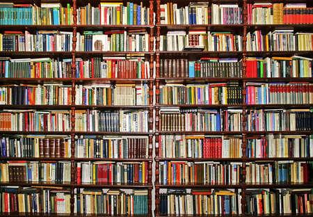 図書館: 多くの本で覆われている全体の大きな壁