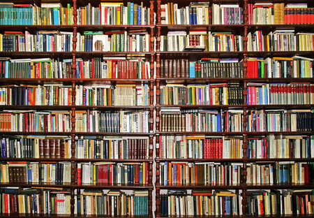 library: Whole big wall covered with lot of books